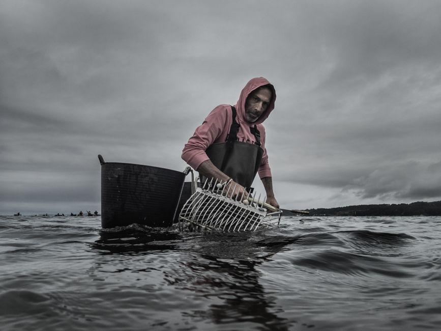 El mariscador del Atlántico