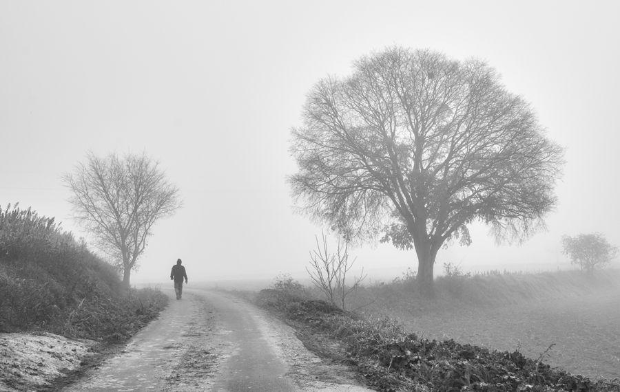 Caminando en la niebla