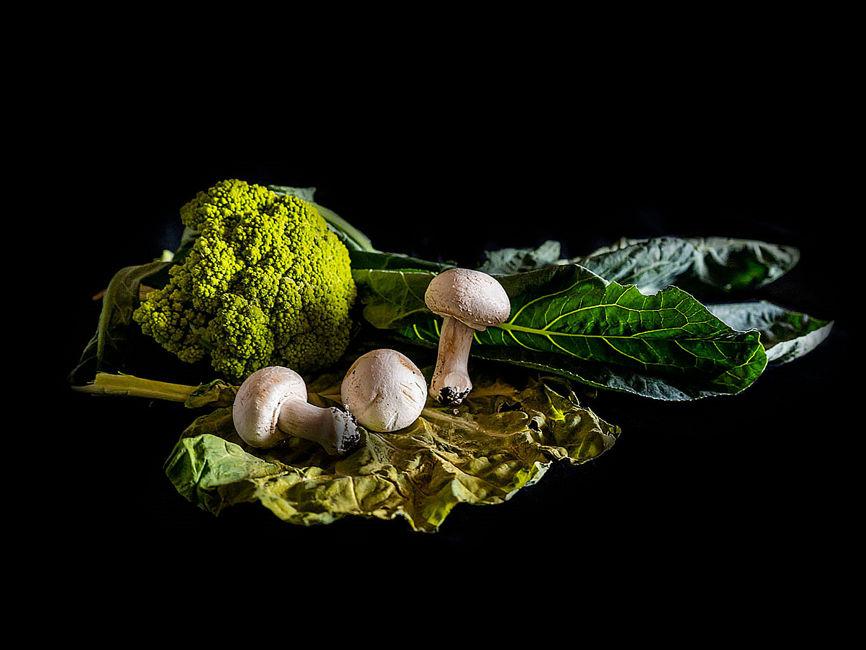 Tres champignons