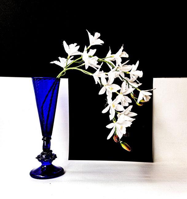 blanc  negre blau