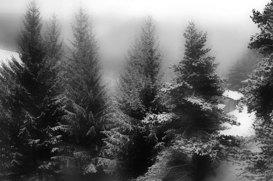 Boira i neu