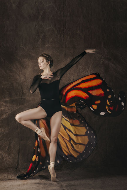 Dance Butterfly II