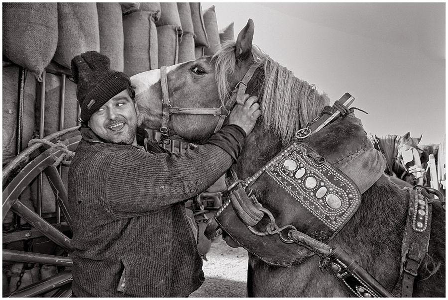 El cavall m' Estima