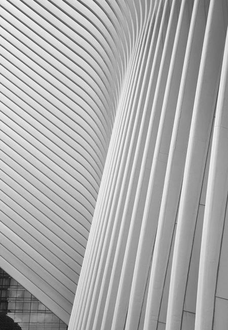Calatrava NYC