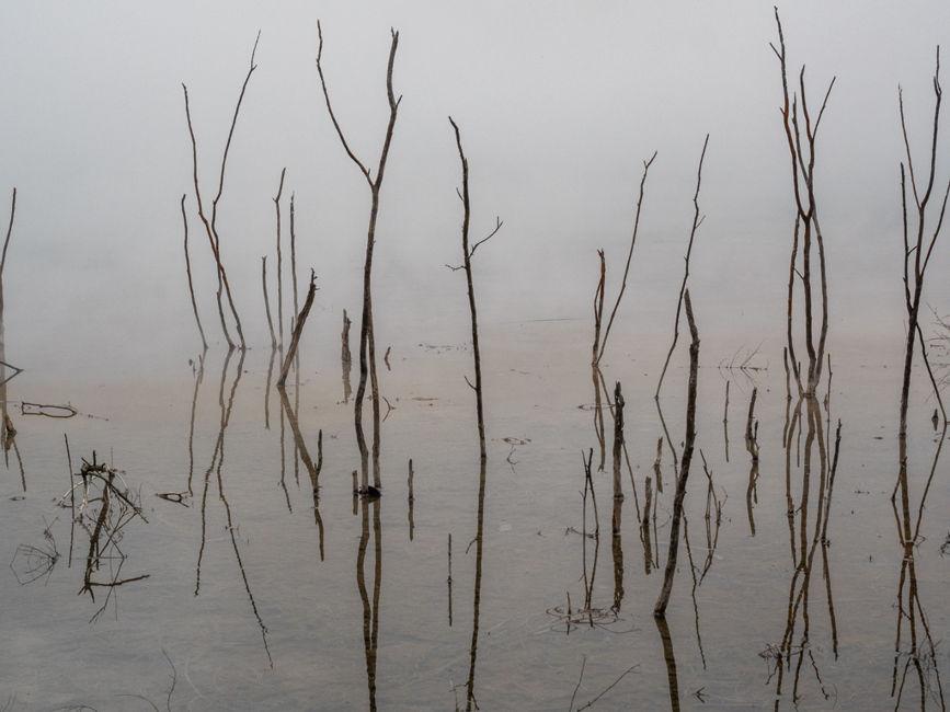 El llac