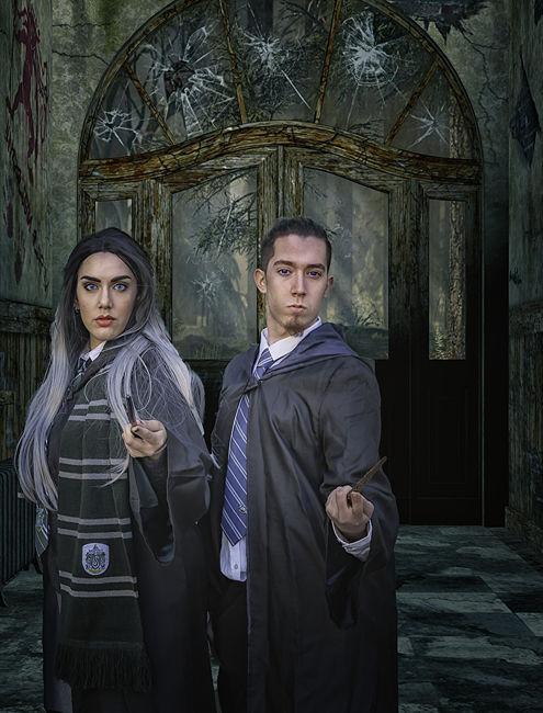 Harry Potter's duo