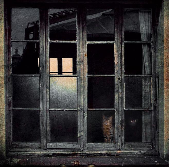 La finestra indiscreta