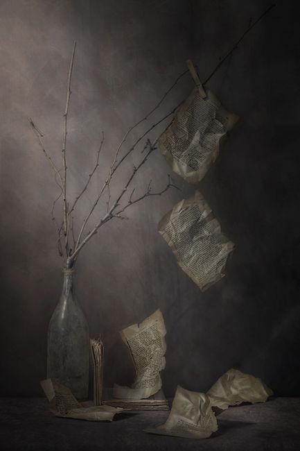 Las hojas del conocimiento