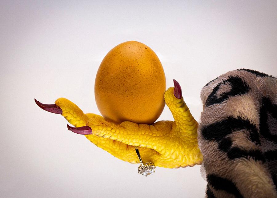 L'ou de la gallina d'or
