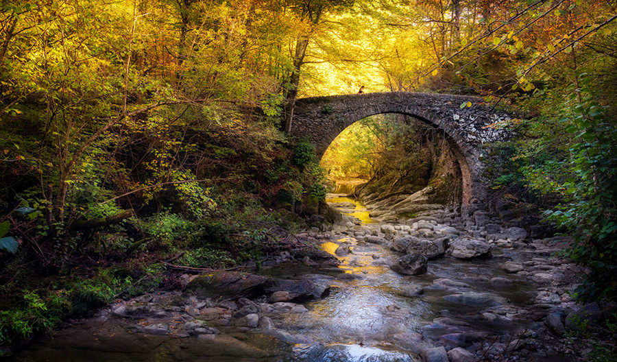 pont (cami salt del moli)