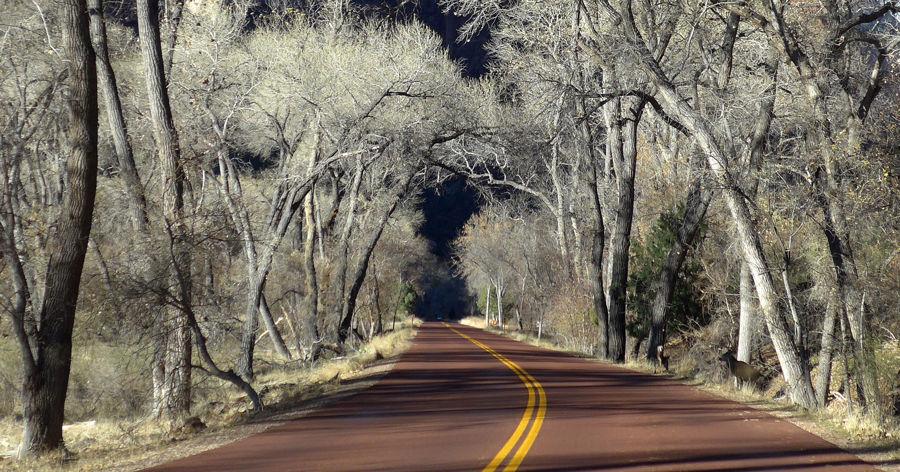 misterio en Zion Valley