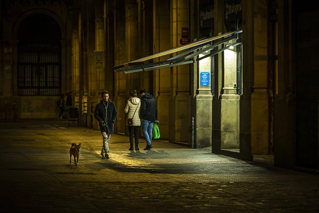 Passeigant el gos