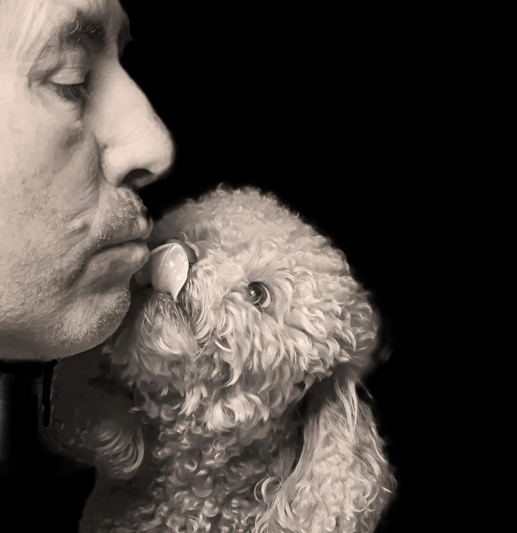 amor de mascota