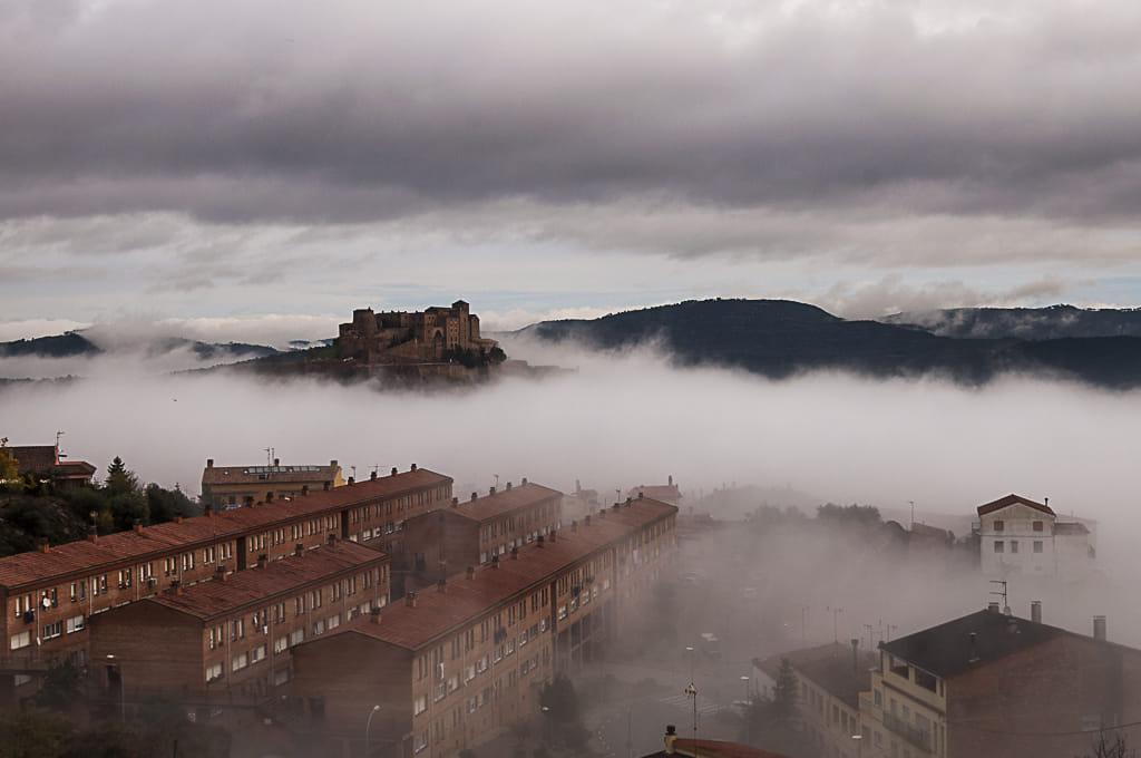 bajo la niebla