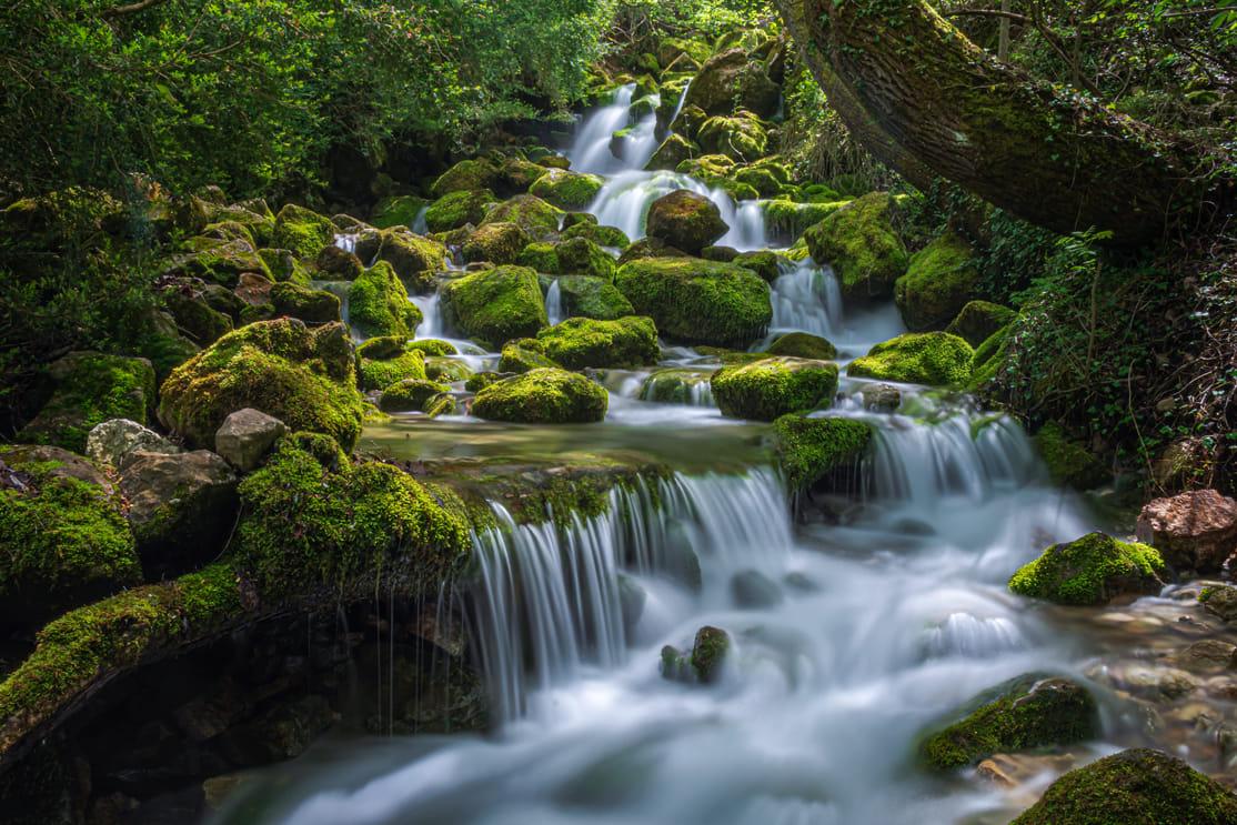 Naixement de riu