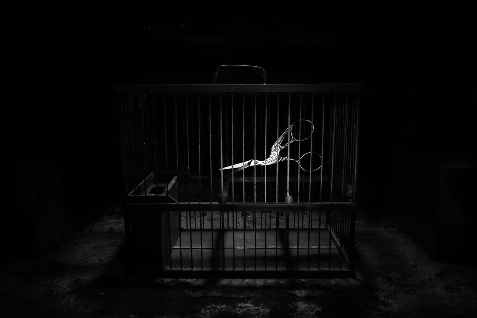 Prisionero