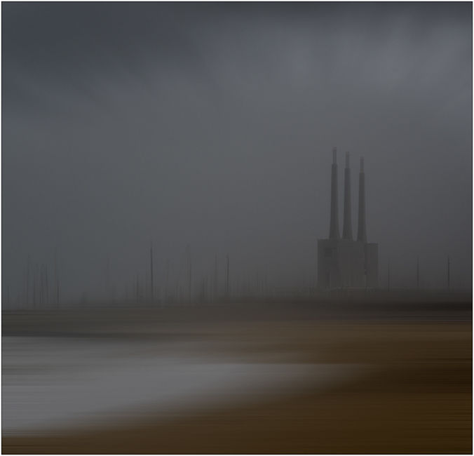 Entre la neblina