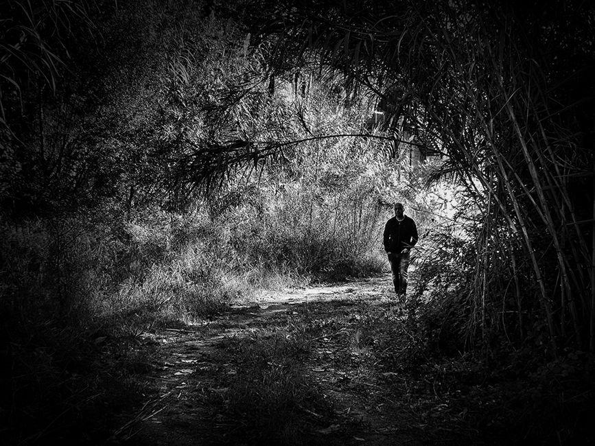 caminant de la llum