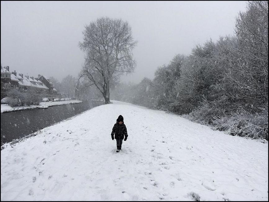 La nevada