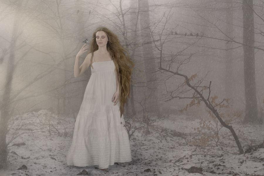 Neige enchantee
