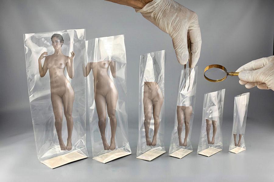 conception biologique