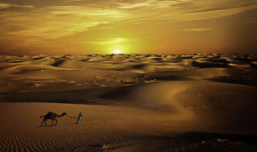 Atardecr en el desierto