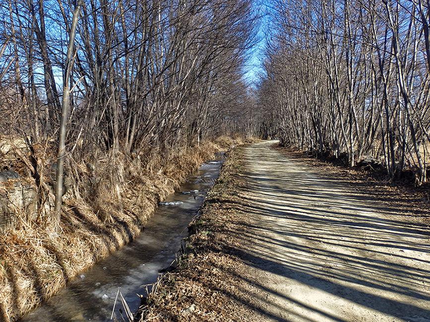 Camí hivernal