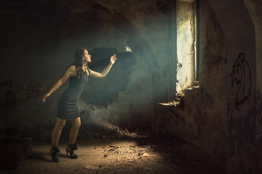 Cercant la llum