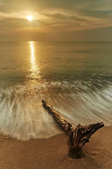 Diego Mora - L'horitzó per destí