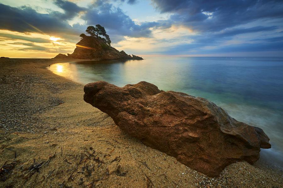 Una colorida matinada. Diego Mora