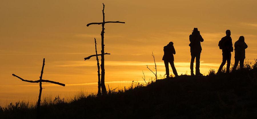 Contrallum al bosc de les creus