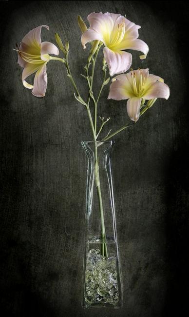 tercet floral