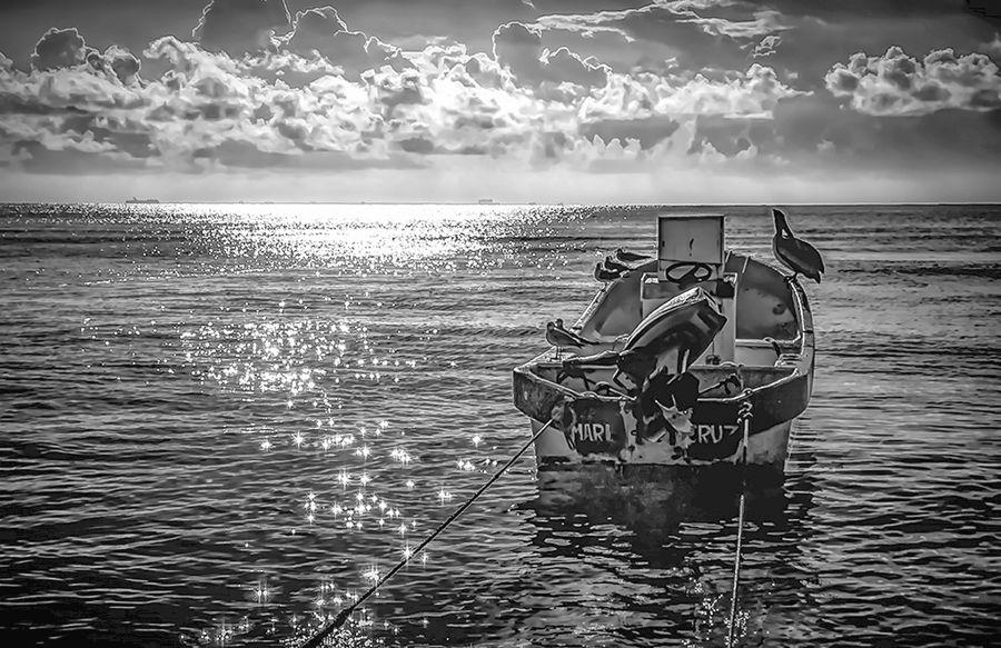 Mar i Cruz