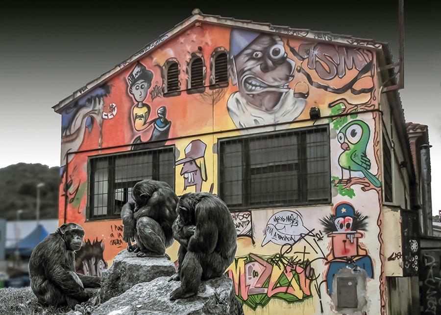 Quin món de micos