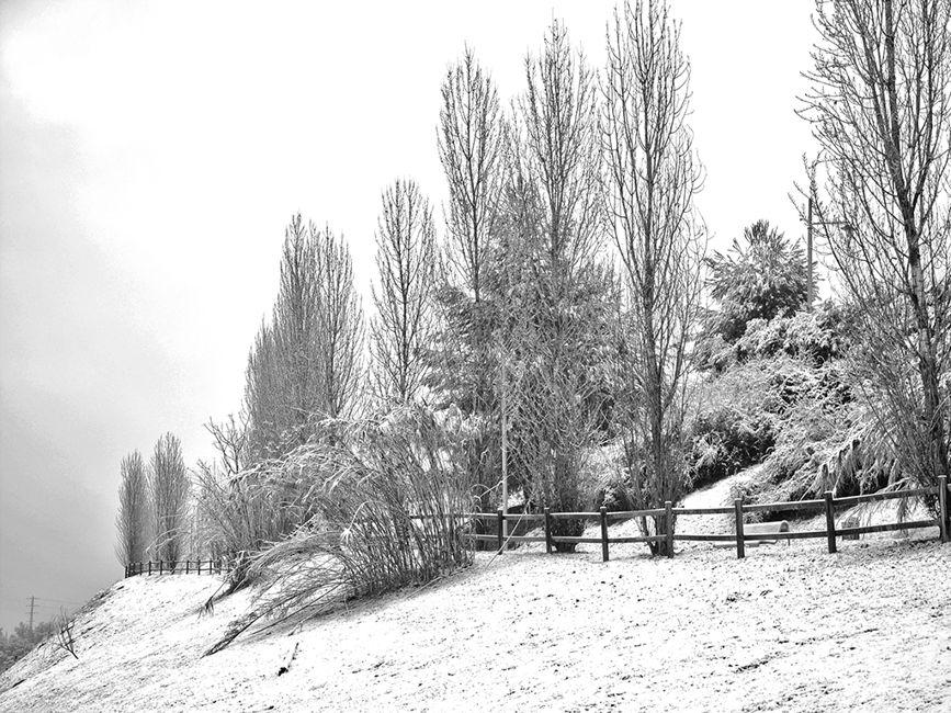 Temps d'hivern