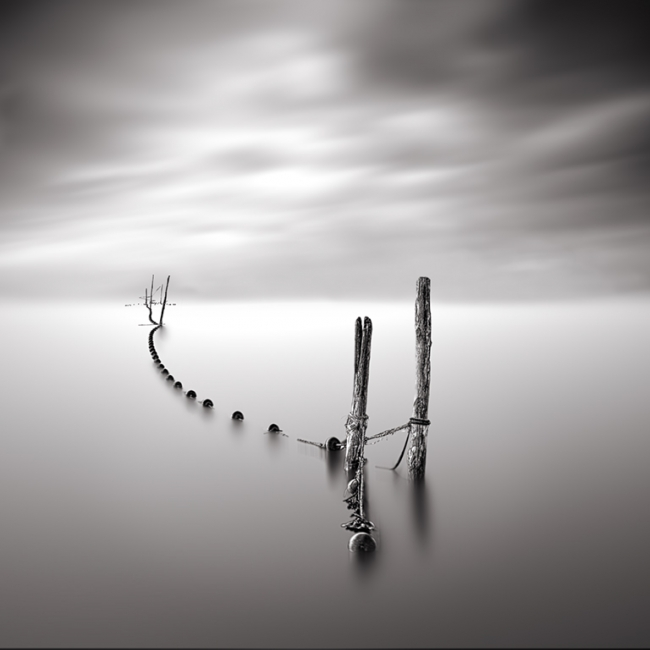 fustes i cordes a l'estany