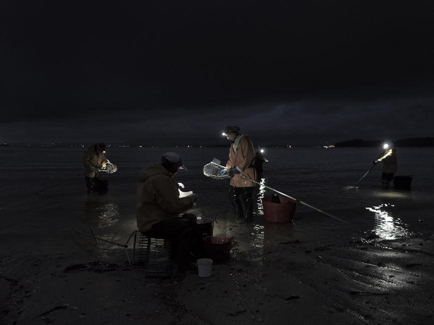 Las Sirenas en la noche