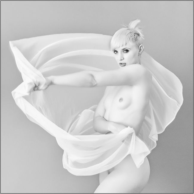 Dama de Blanc