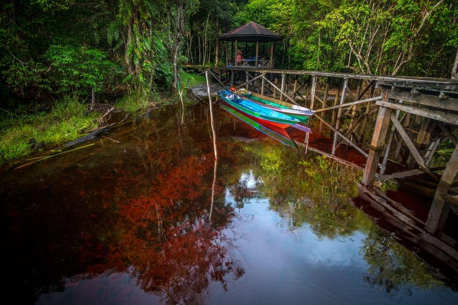 Capvespre a Borneo