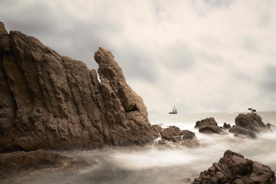 Contra vent i marea