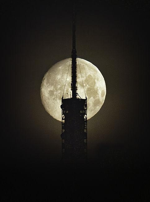 Lluna Vintage