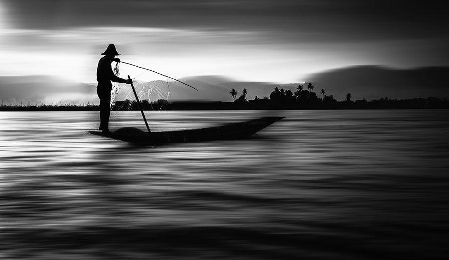 Pesca blanc i negre