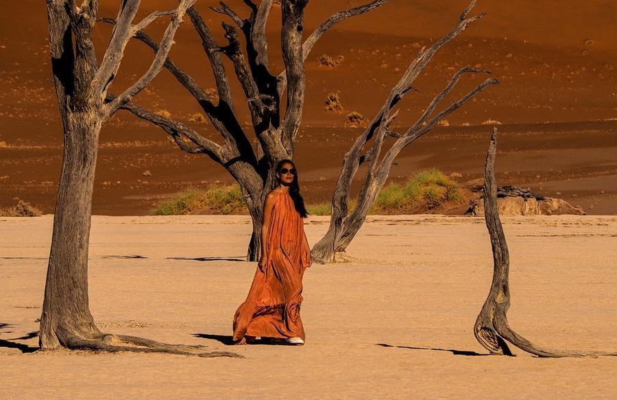 un desert viu