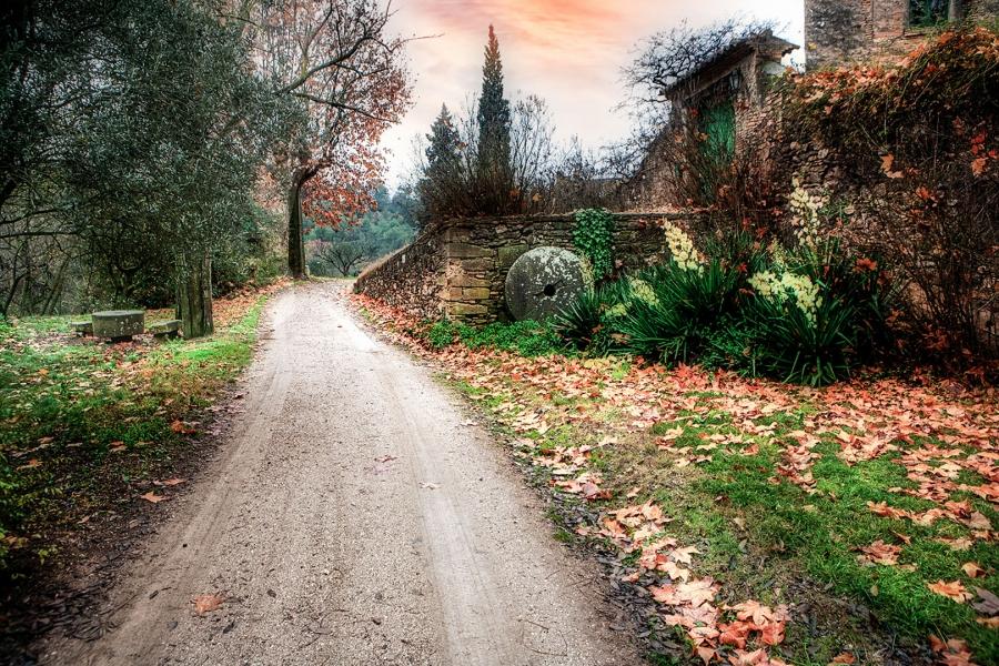 Cami a la Masia