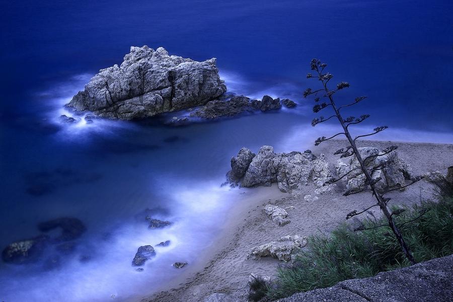 Roca Grossa
