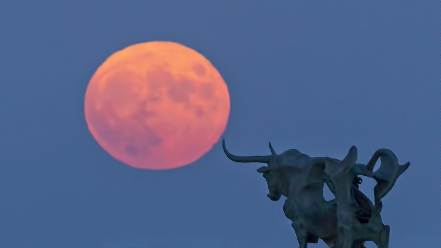 Pasífae encisada per la Lluna