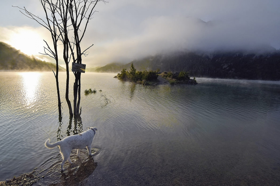 L`estany a l`alba