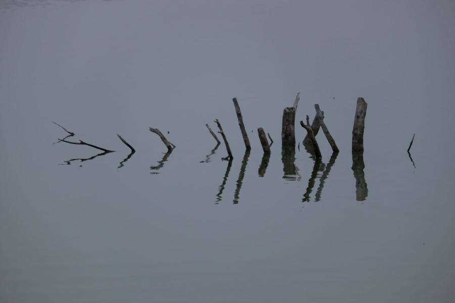 Reflexos a Ivars a l'hivern
