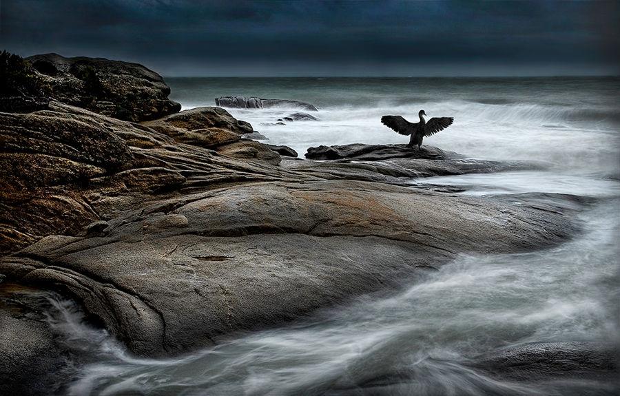 Flat rock