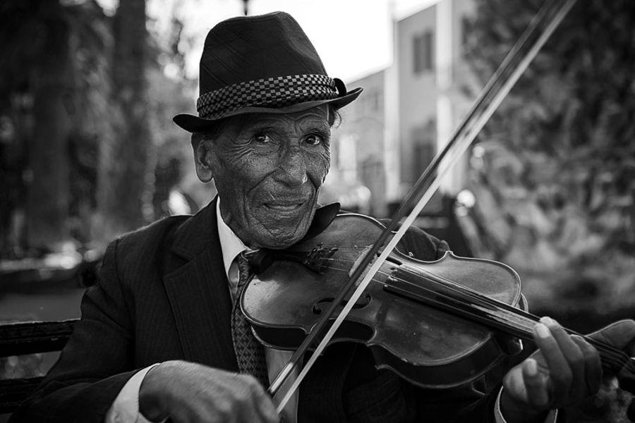music carrer